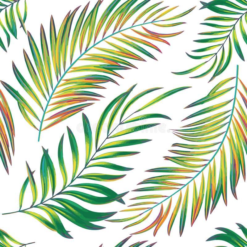 Teste padrão sem emenda do vetor com folhas de palmeira coloridas brilhantes ilustração royalty free