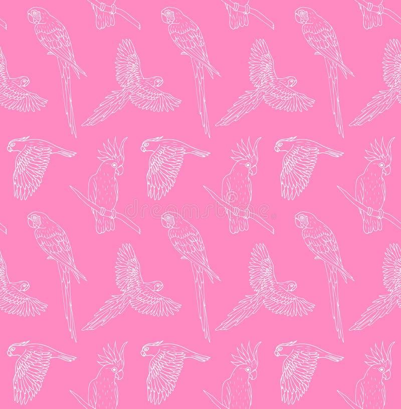 Teste padrão sem emenda do vetor da linha branca voo tirado mão do papagaio e assento no fundo cor-de-rosa ilustração stock