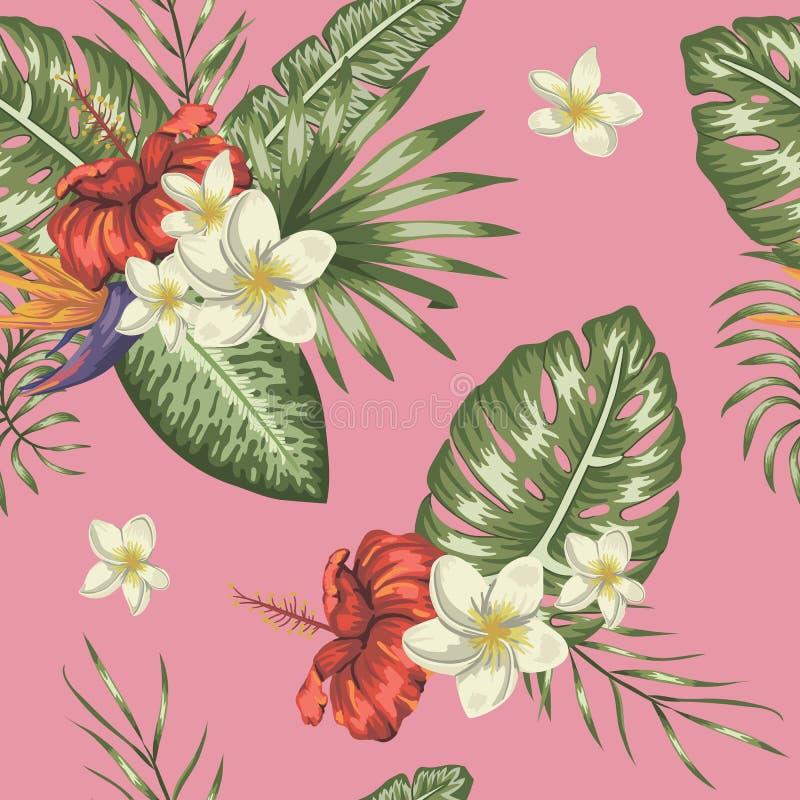 Teste padrão sem emenda do vetor das folhas tropicais verdes com plumeria e das flores do hibiscus no fundo cor-de-rosa ilustração do vetor