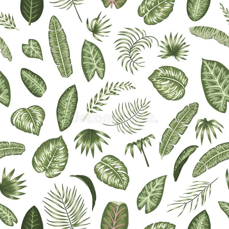 Teste padrão sem emenda do vetor das folhas tropicais verdes no fundo branco fotos de stock royalty free