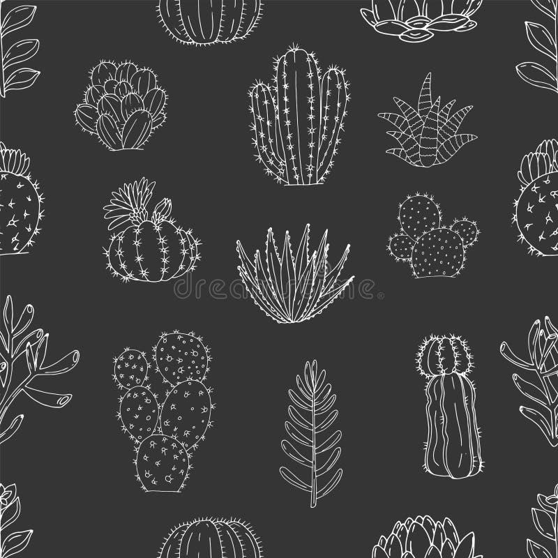 Teste padrão sem emenda do vetor dos elementos com os cactos e as plantas carnudas tirados mão em um fundo do quadro ilustração do vetor