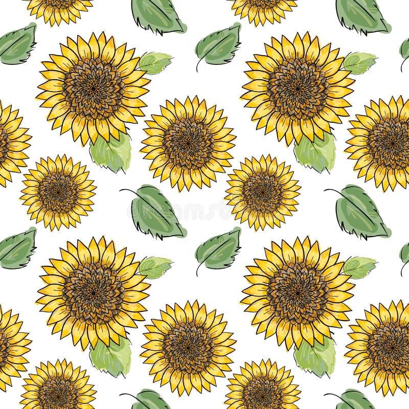 Teste padrão sem emenda do vetor do girassol com folhas verdes, imitando a tinta e a aquarela no fundo branco Cabeças de flor des ilustração royalty free