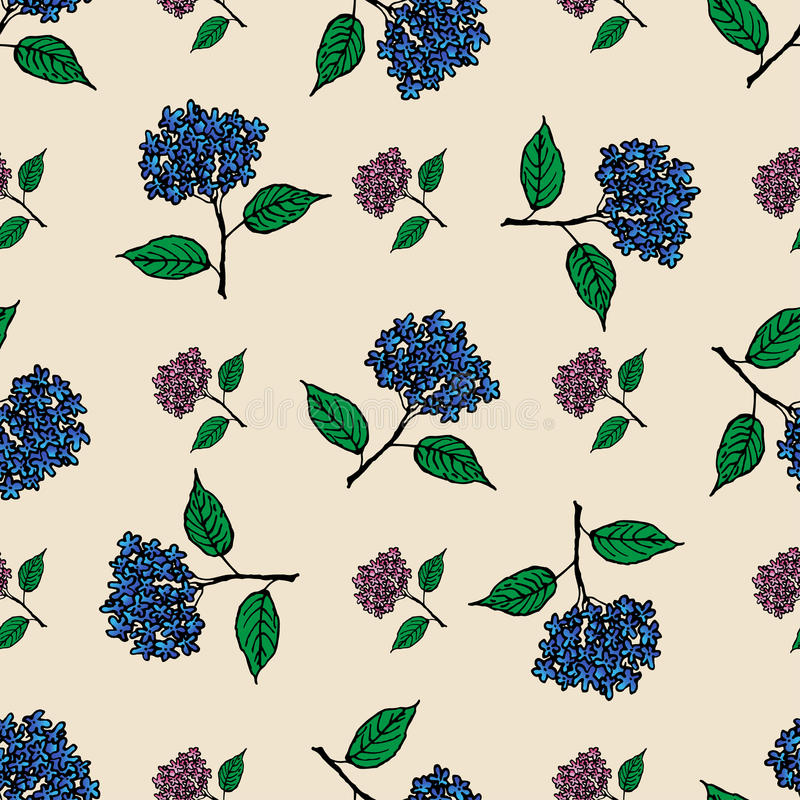 Teste padrão sem emenda do vintage com hortênsia das flores ilustração stock