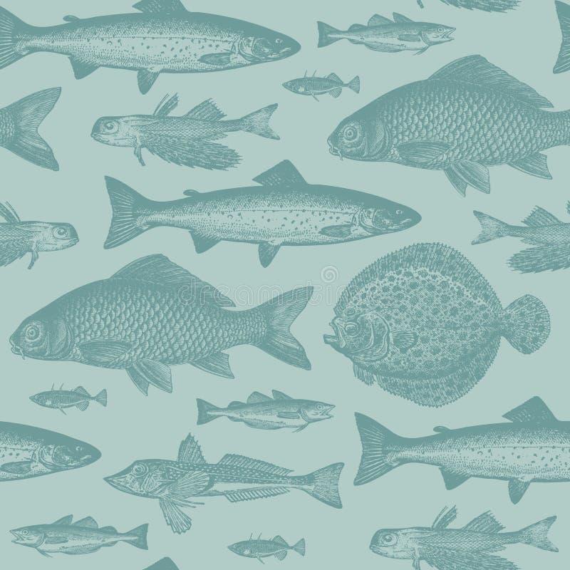 Teste padrão sem emenda dos peixes ilustração royalty free