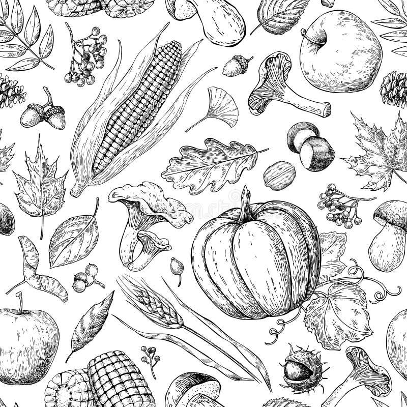 Teste padrão sem emenda dos produtos da colheita Entregue o fundo tirado do vetor do vintage com abóbora, maçã, milho, trigo, muc ilustração royalty free