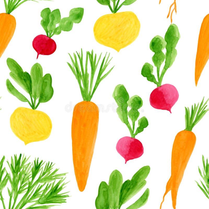 Teste padrão sem emenda dos vegetais de raiz da aquarela ilustração royalty free