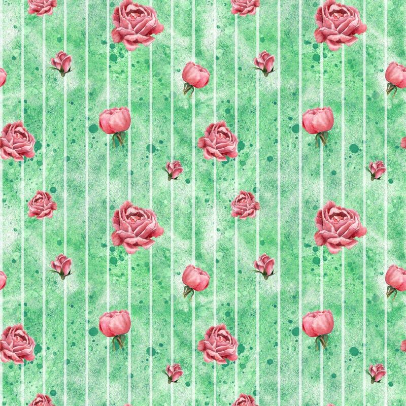 Teste padrão sem emenda, feito de rosas de florescência cor-de-rosa, ilustração botânica tirada mão, no fundo cor-de-rosa ilustração stock