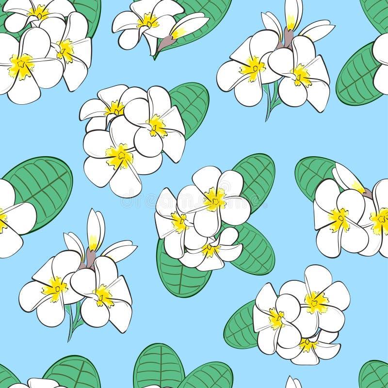 Teste padrão sem emenda floral ilustração royalty free