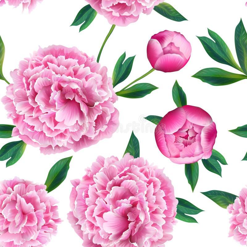 Teste padrão sem emenda floral com as flores cor-de-rosa da peônia Fundo de florescência da mola para a tela, cópias, decoração d ilustração royalty free