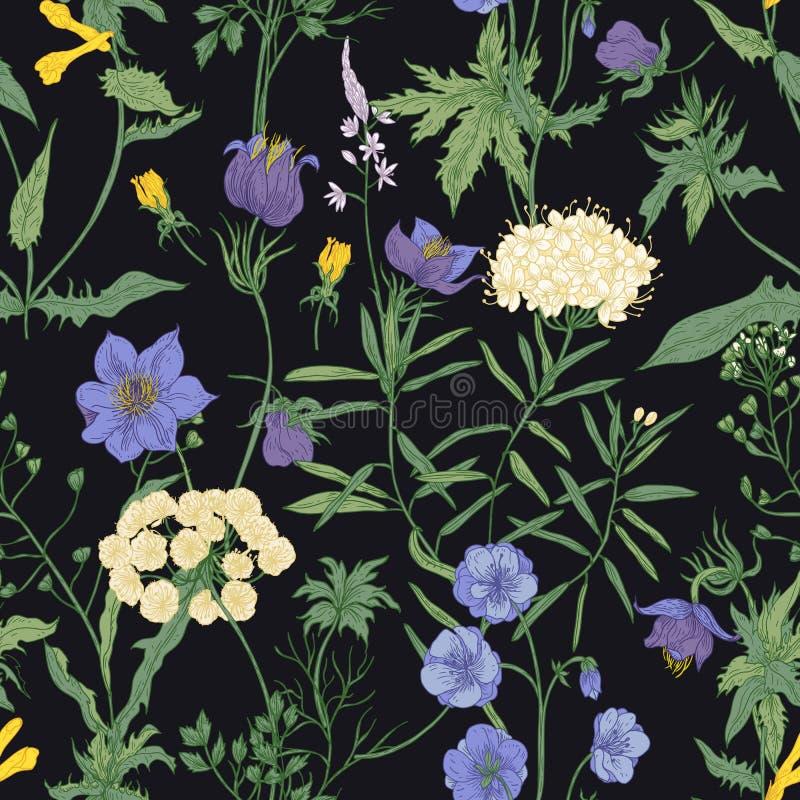 Teste padrão sem emenda floral com as flores selvagens de florescência e as plantas de florescência do prado no fundo preto flora ilustração royalty free