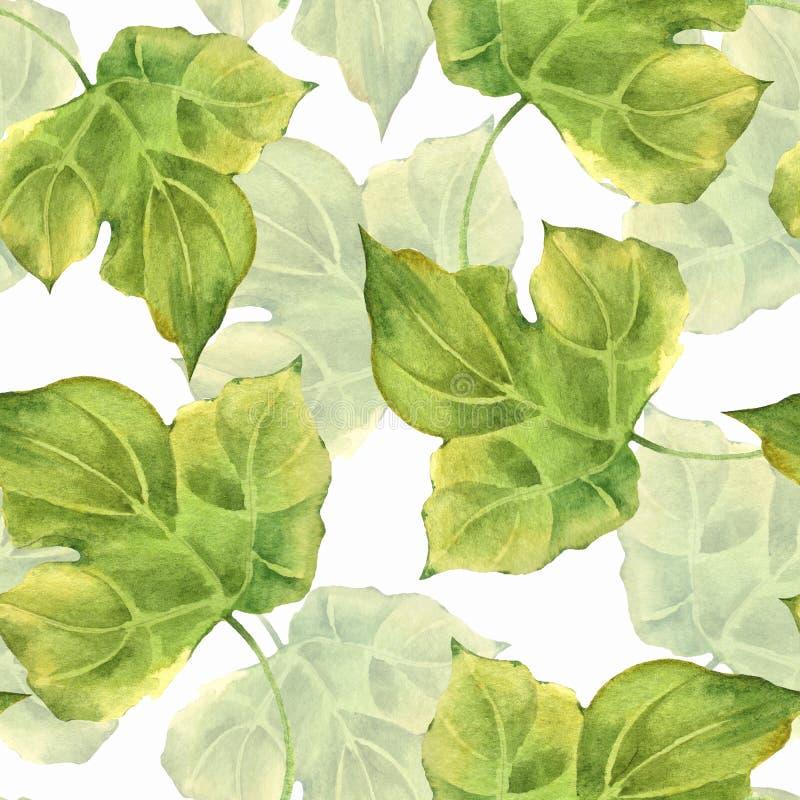 Teste padrão sem emenda floral com as folhas verdes 2 da aquarela ilustração stock