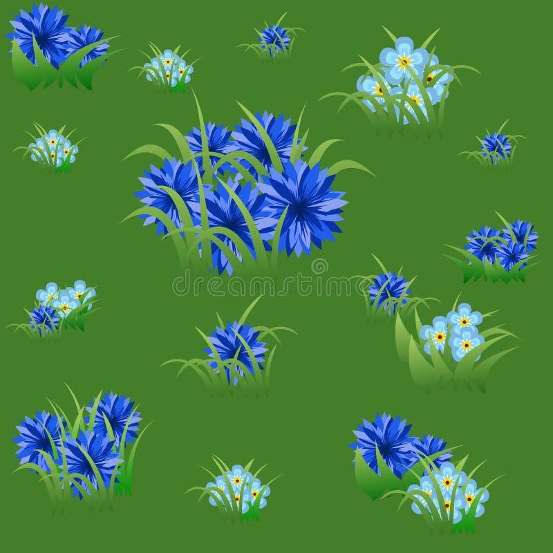 Teste padrão sem emenda floral com centáureas e grama azuis ilustração royalty free