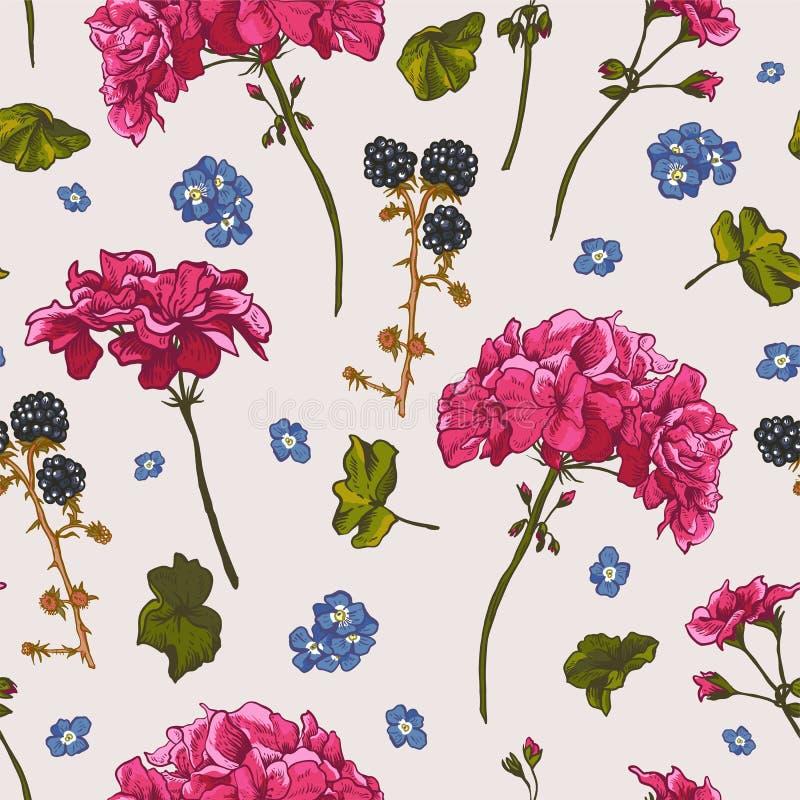 Teste padrão sem emenda floral com gerânio de florescência ilustração do vetor