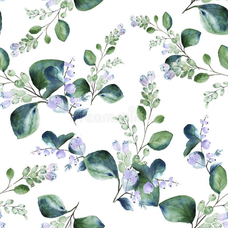 Teste padrão sem emenda floral da aquarela com os galhos de florescência do snowberry no fundo branco ilustração stock