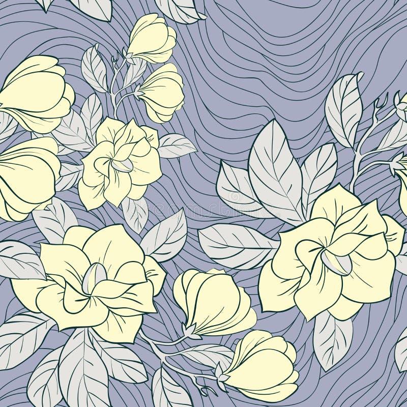 Teste padrão sem emenda floral do jasmim ilustração stock