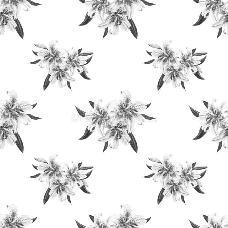 Teste padrão sem emenda floral do lírio preto e branco bonito Ramalhete das flores C?pia floral Desenho do marcador ilustração do vetor