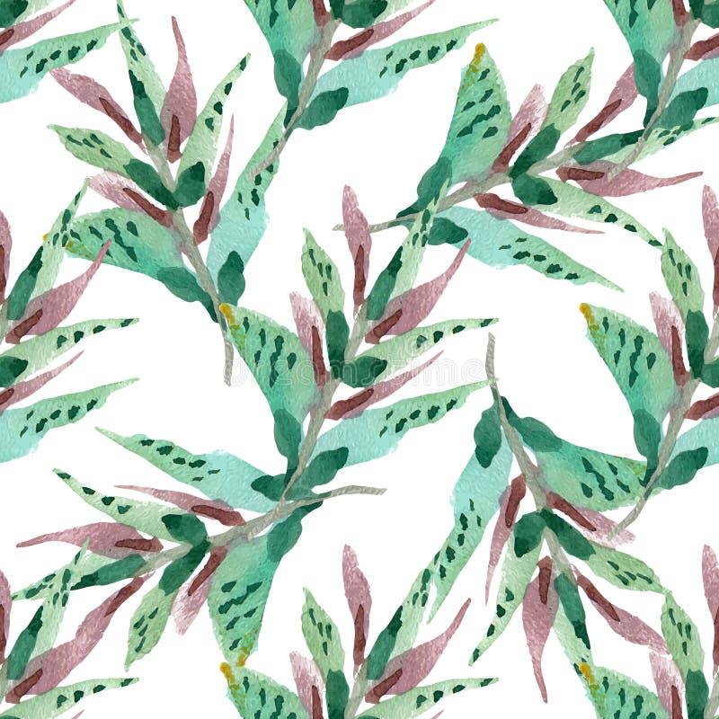 Teste padrão sem emenda floral do vetor ilustração royalty free