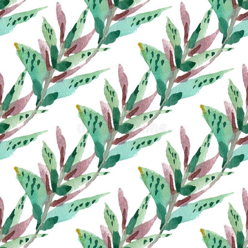 Teste padrão sem emenda floral do vetor ilustração stock