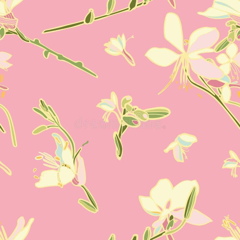 Teste padrão sem emenda floral do vetor do rosa com lírio ilustração stock