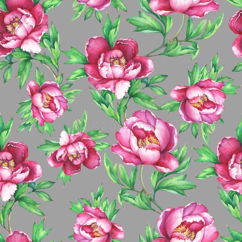 Teste padrão sem emenda floral do vintage com florescência de peônias cor-de-rosa, no fundo cinzento ilustração royalty free