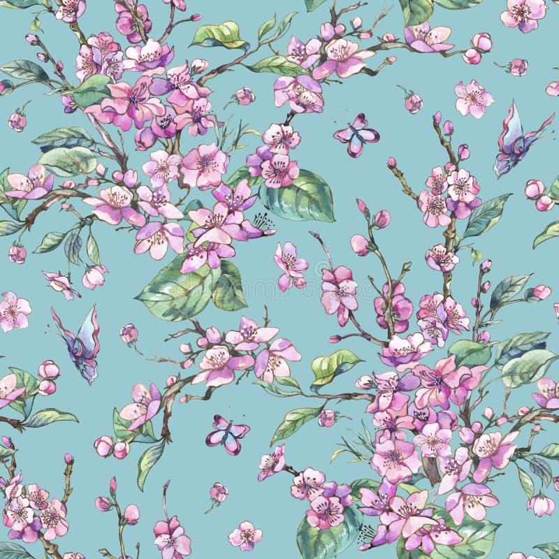Teste padrão sem emenda floral do vintage da mola da aquarela com bloo cor-de-rosa ilustração stock