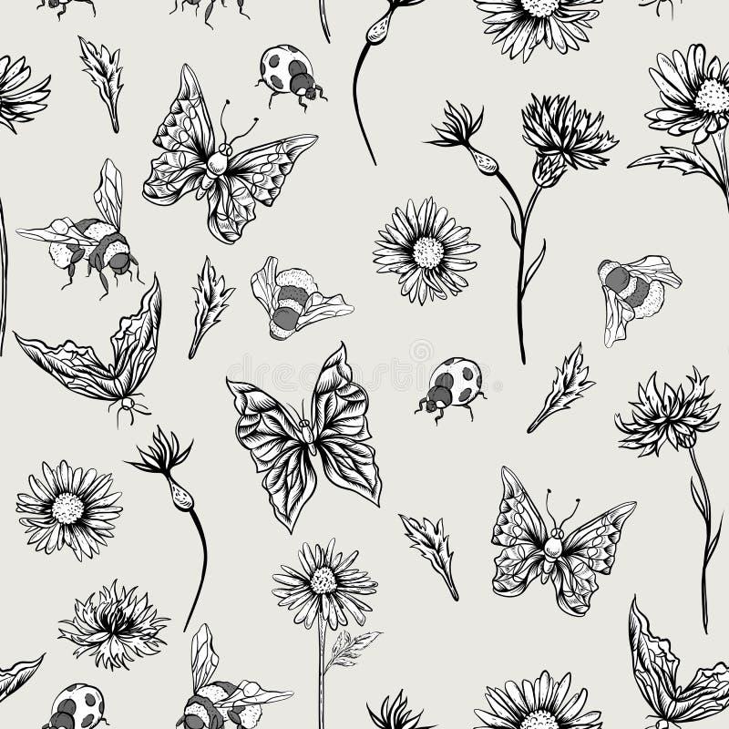 Teste padrão sem emenda floral do vintage monocromático do verão ilustração royalty free