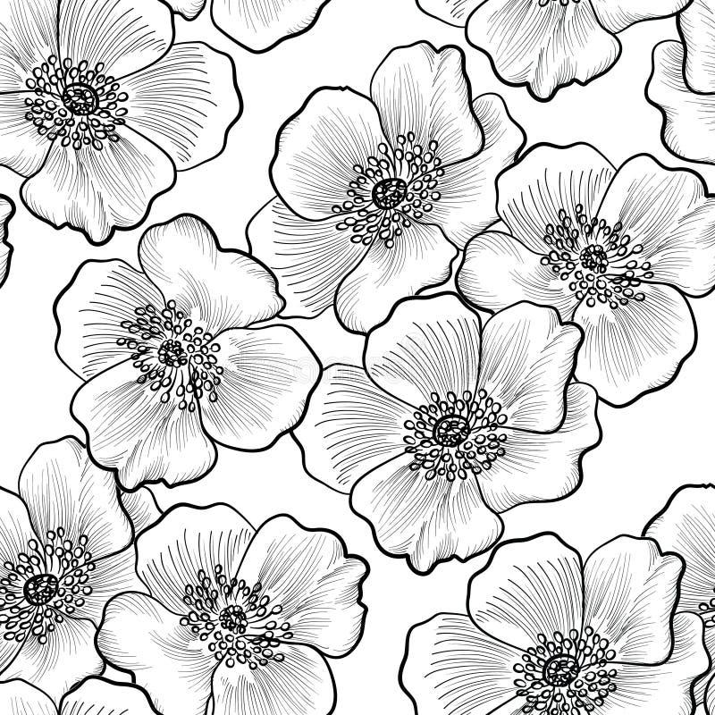 Teste padrão sem emenda floral Fundo da flor Blac do esboço do Flourish ilustração do vetor