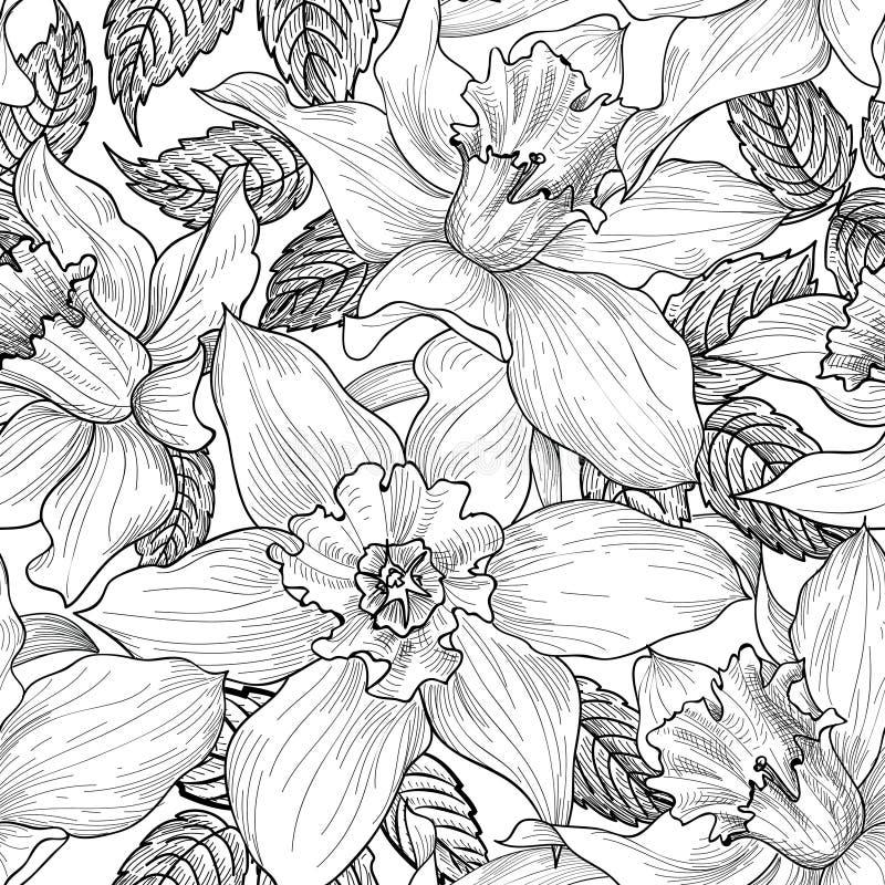 Teste padrão sem emenda floral Fundo da flor Floral gravado ilustração do vetor