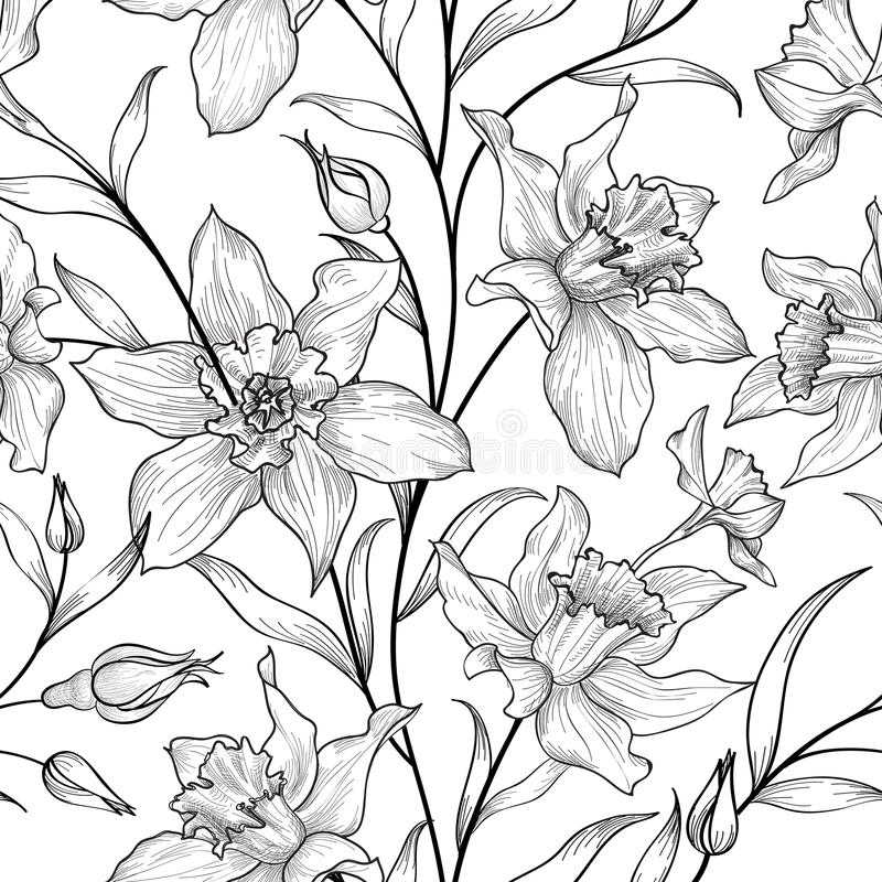 Teste padrão sem emenda floral Fundo preto e branco da flor flor ilustração stock