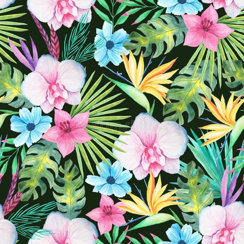 Teste padrão sem emenda floral tropical da aquarela ilustração royalty free