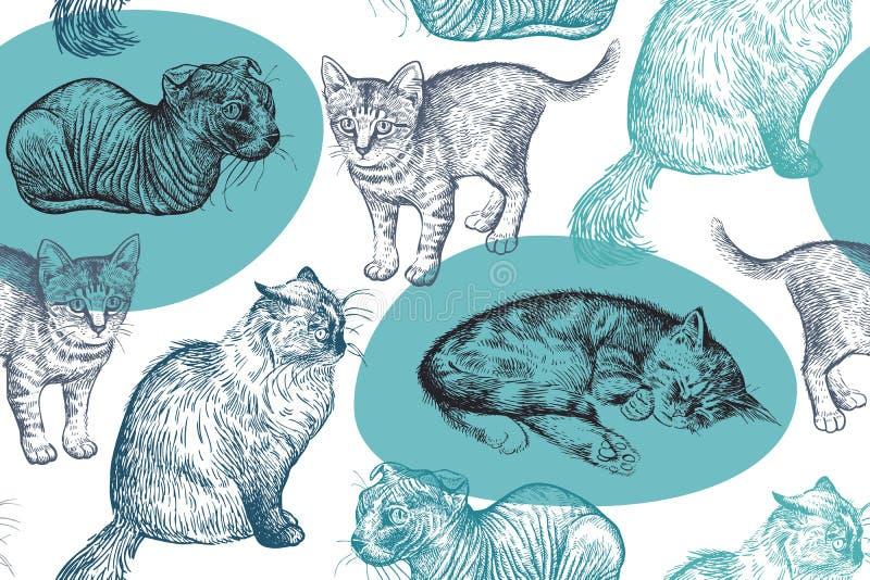 Teste padrão sem emenda Gatinhos pequenos bonitos Desenho feito à mão dos gatos ilustração do vetor