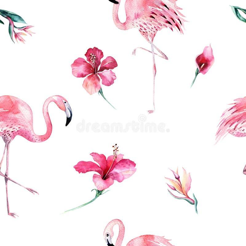 Teste padrão sem emenda isolado tropical com flamingo Desenho tropico da aquarela, pássaro cor-de-rosa e palmeira das hortaliças, ilustração do vetor