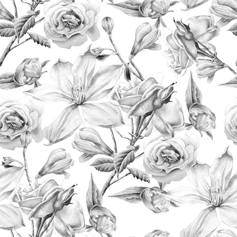 Teste padrão sem emenda monocromático com flores Clematis Rosa Alstroemeria Ilustração da aguarela ilustração do vetor