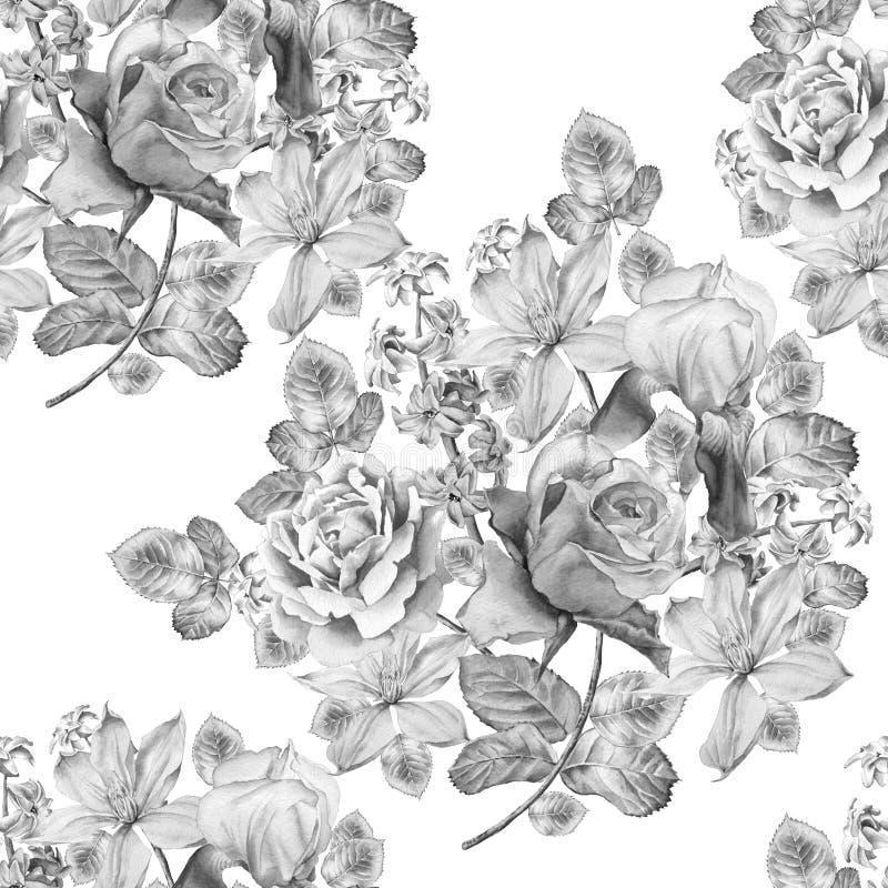 Teste padrão sem emenda monocromático com flores da mola Rosa íris Jacinto Clematis watercolor ilustração stock