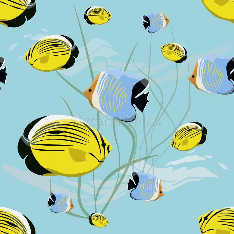 Teste padrão sem emenda Mundo subaquático realístico Peixes e algas tropicais brilhantes ilustração stock
