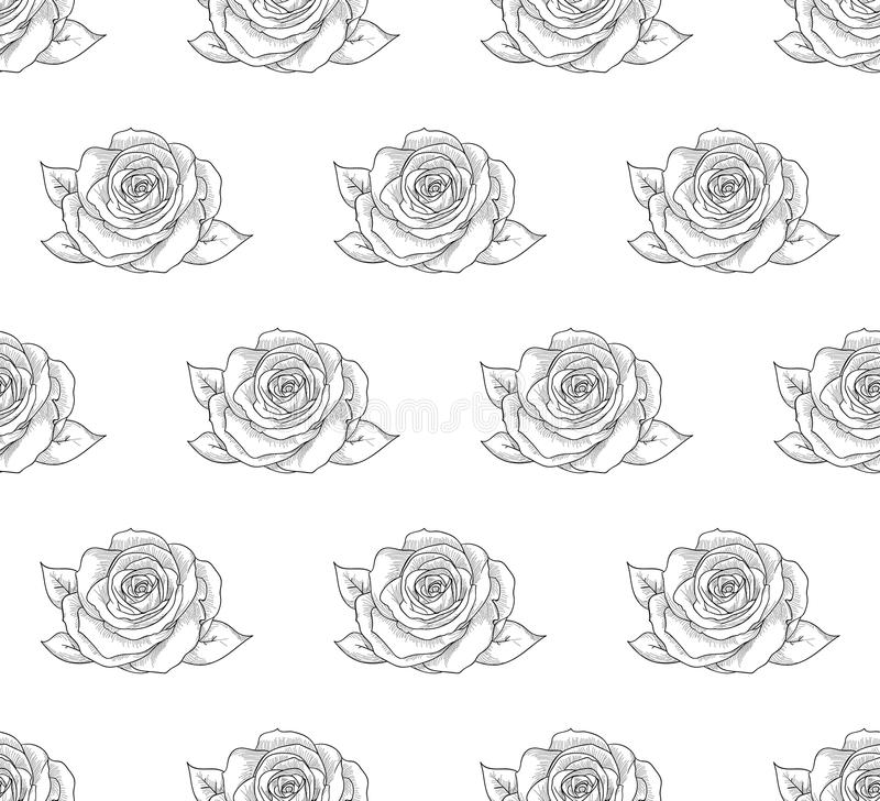 Teste padrão sem emenda preto do vetor com flores tiradas, rosas ilustração royalty free