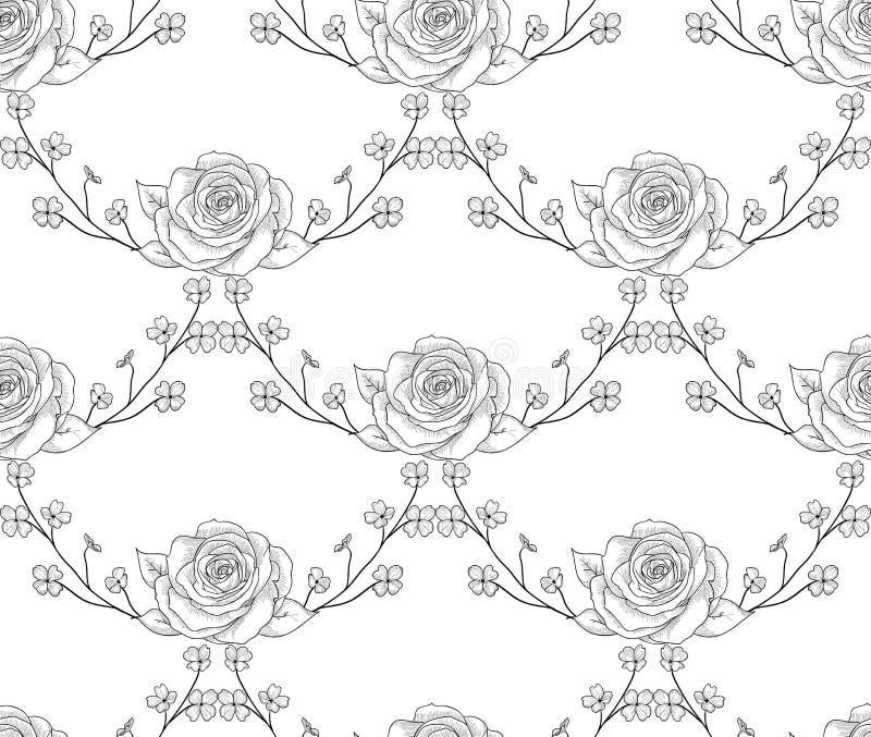 Teste padrão sem emenda preto do vetor com flores tiradas, rosas com ramos ilustração do vetor