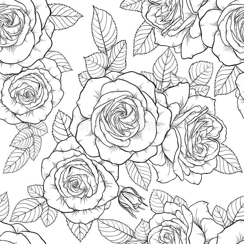 Teste padrão sem emenda preto e branco monocromático bonito com rosas, folhas Linhas de contorno tiradas mão ilustração stock