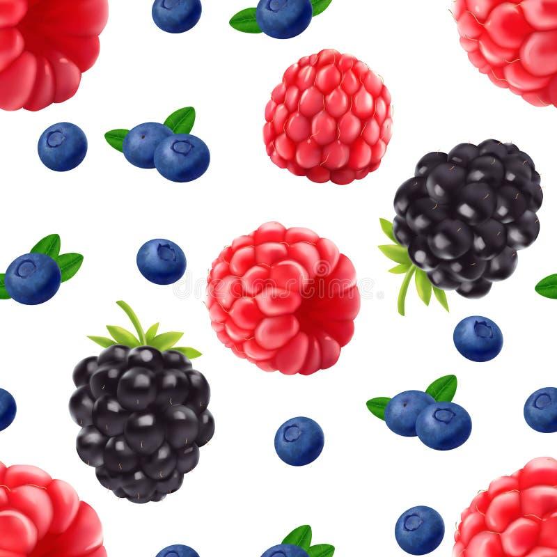 Teste padrão sem emenda realístico do mirtilo e da framboesa de Blackberry ilustração royalty free