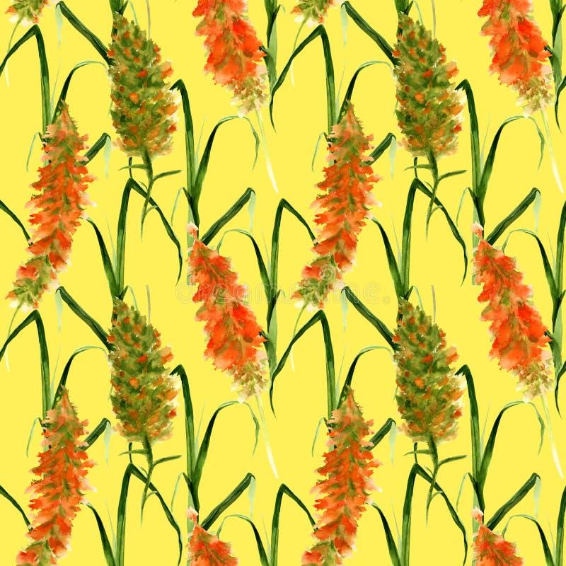Teste padr?o sem emenda tirado m?o com as flores selvagens da aquarela, as ervas e gramas amarelas e verdes em um fundo amarelo imagens de stock royalty free