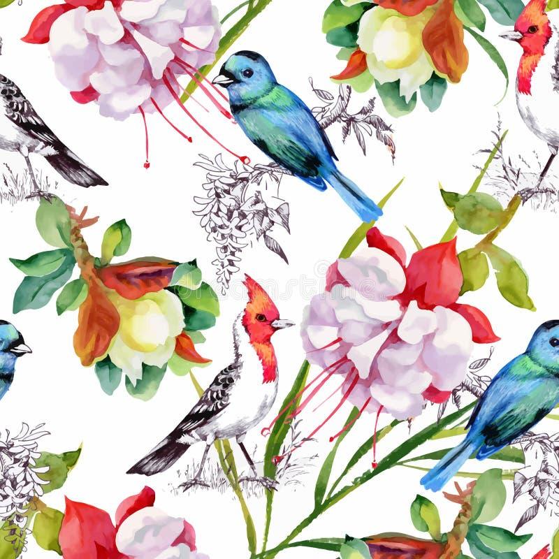 Teste padrão sem emenda tirado mão da aquarela com flores bonitas e os pássaros coloridos no fundo branco ilustração royalty free