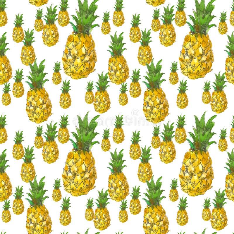 Teste padrão sem emenda tirado mão da aquarela do fruto do abacaxi em um fundo branco Aperfeiçoe para papéis de parede, página da imagens de stock