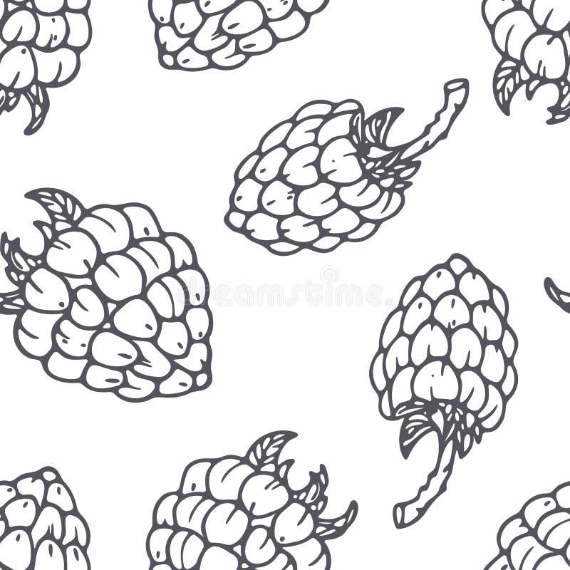 Teste padrão sem emenda tirado mão do esboço com framboesa Fundo preto e branco do alimento ilustração stock