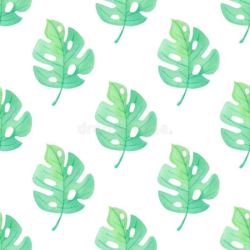 Teste padrão sem emenda tropical da aquarela com folhas verdes ilustração stock