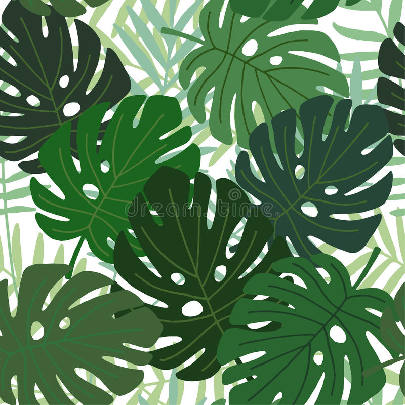 Teste padrão sem emenda tropical das folhas da palma e do monstera, projeto liso, ilustração ilustração stock
