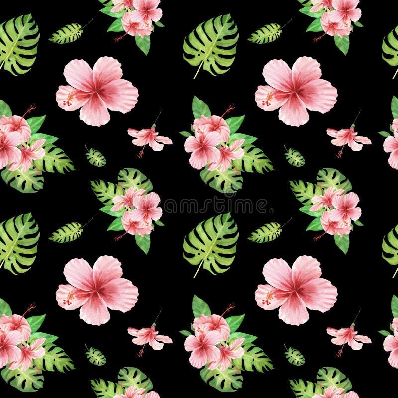 Teste padrão sem emenda tropical floral da aquarela com as folhas verdes do monstera e as flores cor-de-rosa do hibiscus no preto ilustração do vetor