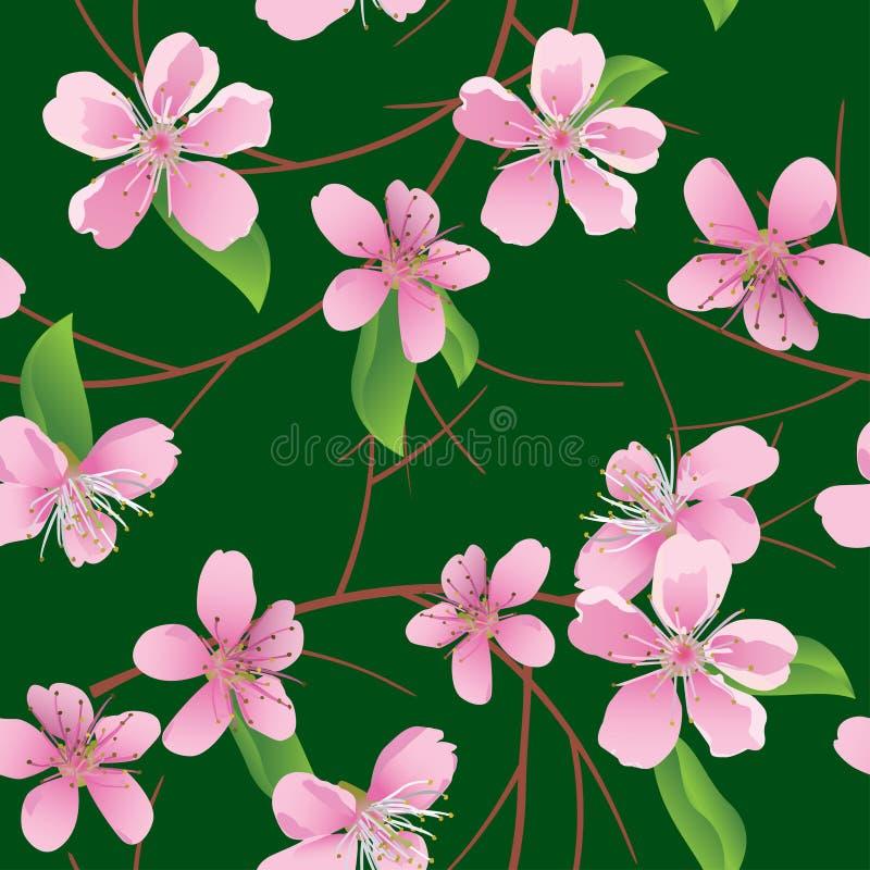 Teste padrão sem emenda verde com flores do pêssego ilustração stock