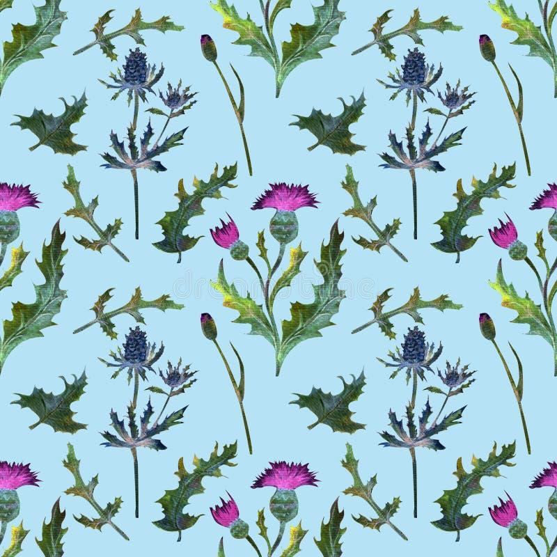 Teste padrão sem emenda Wildflowers no azul A imagem do verão Ilustração da aguarela Elemento do projeto ilustração do vetor