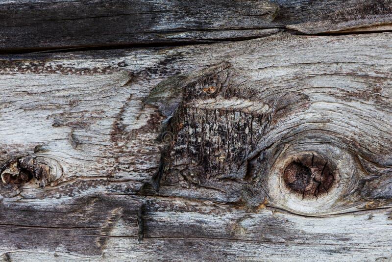 Teste padrão textured de madeira do fundo fotos de stock royalty free