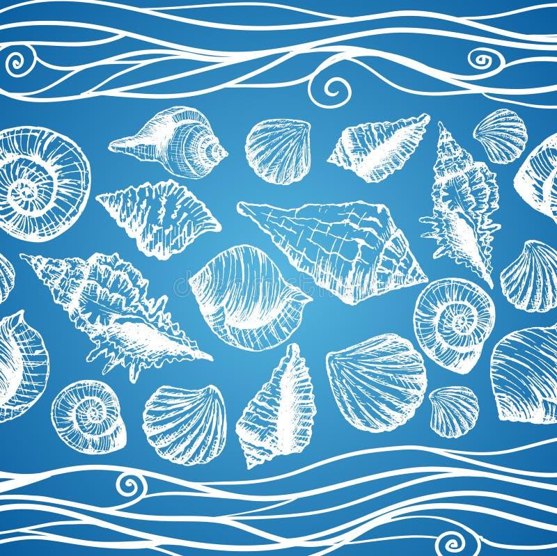 Teste padrão tirado mão com várias conchas do mar ilustração do vetor